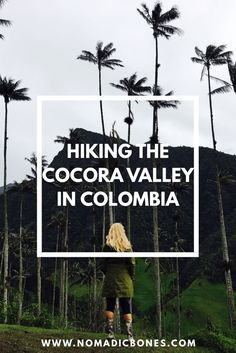 Hiking the Cocora Valley in Colombia