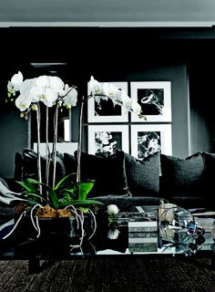 Black on the walls is the perfect palate to really make colors sing. The great thing is that when a room is dark, it can actually expand and seem bigger than it actually is. For NYC, this is almost essential. Have you ever seen those small bathrooms all in black... so chic!