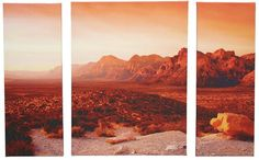 Desert Sunset 3-Split Canvas