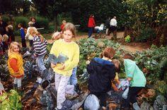Botanischer Garten Hamburg - 2016 | Speziell für KITAS und Grundschulklassen