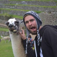 This llama who has nailed the Insta game: