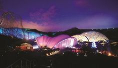 Christmas at the Eden Project: Event - Days Out - Junior