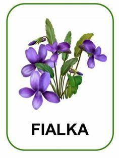Dandelion Flower, Peony Flower, Flower Art, Purple Flowers, Spring Flowers, Paper Flowers, Free Flower Clipart, Purple Wall Art, Vintage Botanical Prints