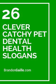 26 Clever Catchy Pet Dental Health Slogans