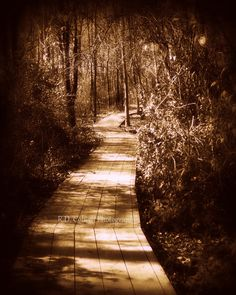 The Path to Enlightenment  8x10 by RDColwellArtPrints on Etsy, $15.00
