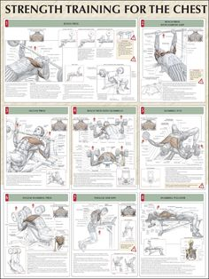 Incinerate Fat and Build Muscle With This Kickass Printable Workout - Strength Training for the Chest: bench press, bench press with narrow grip, incline press, bench pr - Fitness Workouts, Fitness Tips, Fitness Motivation, Health Fitness, Lifting Motivation, Fitness Quotes, Strength Workout, Strength Training, Weight Training