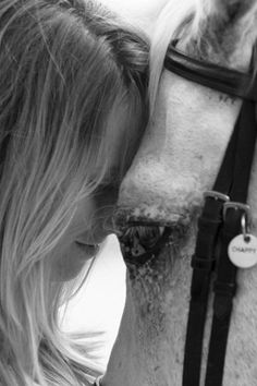 Beautiful photo with horse bridle tag. http://www.starfishfarms.com/horse/bridletags/index.html