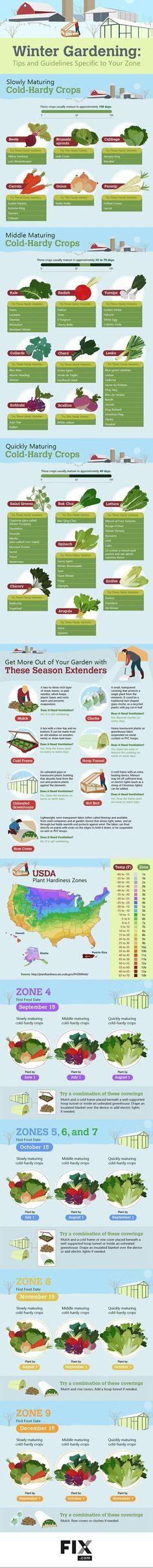 How to Grow Food 365
