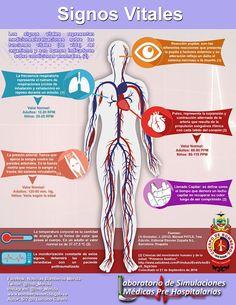 Nursing School Tips, Nursing Notes, School Notes, Med School, Medicine Notes, School Information, Medical Anatomy, Chicago Med, Med Student