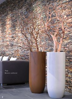 #ClippedOnIssuu from Plants first Choice Design in colour