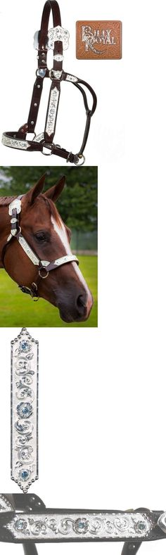 Halters 139601: Horse Silver Show Halter - Billy Royal - Yearling Size - Blue Crystals-Dark Oil BUY IT NOW ONLY: $349.59