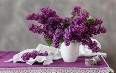 Plafoniera Fiori Lilla : Fantastiche immagini su fiori viola backyard patio