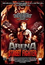 """Arena of the Street Fighter        Arena of the Street Fighter      Arena of the Street Fighter  Ocena:  3.40  Žanr:  Action  The """"Bloods"""" are the most intimidating and violent gang in the city. A lawless city... where gangs rule the streets... The vicious and blood thirsty murderer Slater is their leader. The city is his domain... he rules! There are those who are not members of gangs such as Mikey and his friends. Mikey lives on the edge he is daring and always in trouble and fights. His…"""