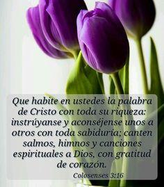 Tu presencia oh Dios en medio de tu pueblo, conforta, alienta, da vida ♥
