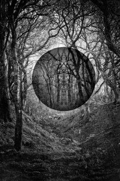 "Saatchi Online Artist: Laurence Winram; Giclée Photography ""Dark (edition of 15)"""