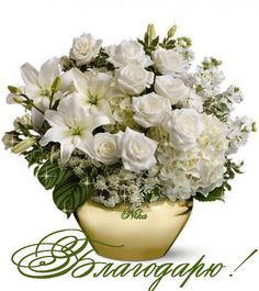 The elegant bouquet includes white roses, white spray roses, white asiatic lilies, white stock and queen anne's lace, accented with assorted greenery. White Flower Arrangements, Funeral Flower Arrangements, Funeral Flowers, Fall Arrangements, White Spray Roses, White Roses, White Flowers, Send Flowers Online, Order Flowers
