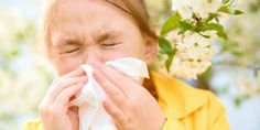 7 Natural Remedies for Allergies - Green-Mom.com