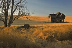 Old Homestead by David M. Cobb