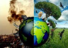 Bildresultat för miljöförstöring