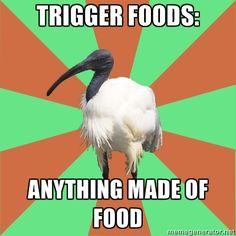 This is how I wanted to respond when my doctor asked what I thought my trigger foods are.