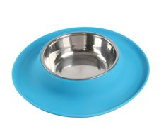 LittleTail Anti-Slip Silicone Edge House Cats Dog No Spill Single Stainless Steel Food Bowl > Special dog product just for you. See it now! : Dog bowls