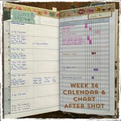 2014 Planner Setup - DIYFish Inserts in Filofax Personal Malden | Carie Harling - Dispatches From The Frat House