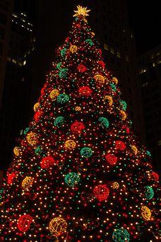 Chicago Christmas by Steve McCoy, via Flickr