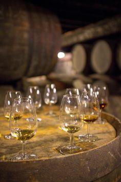 Bowmore, warehouse whisky tasting