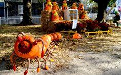 America's Best Towns for Halloween: Chatham, Massachusettes