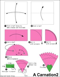 293 best origami fun 1 images on pinterest origami paper diy carnation mightylinksfo