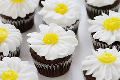 11 Insanely Easy DIY Cupcakes That You Can& Wait to Make 11 Insanely Easy DIY Cupcakes That You Can't Wait to MakeThis post may contain affiliate links. And More Cupcakes! Frost Cupcakes, Cupcakes Flores, Daisy Cupcakes, Garden Cupcakes, Succulent Cupcakes, Spring Cupcakes, Oreo Cupcakes, Easter Cupcakes, Cupcake Frosting
