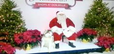 TV coverage on CTV News for Pooch Pics with Santa!