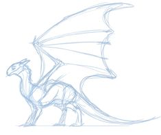 Here Be Dragons - and to close out my night here's a sneak peak of little Volly's full body design. Animal Sketches, Art Drawings Sketches, Animal Drawings, Cool Drawings, Sketch Drawing, Drawing Ideas, Drawing Base, Wings Drawing, Dragon Poses