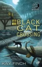Bad Luck Cat Mystery Series by Kay Finch