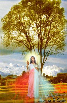 jesus con arbol de fondo