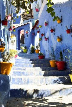 Chefchaouen, Morocco: Nestled at the foothills of the Rif Mountain range, Chefchaouen sits quietly. Its blue walls are bursting in color with powerful yet calming energy. As you snake through the city's slender cobblestone walk streets, an aromatic musk fills the air. In your wandering, Berber men donning colorful floor-length djellabas make proud attempts to sell you their wares — camel hair rugs, jewelry, bags, wool clothing…it's all here, and it's beautiful.