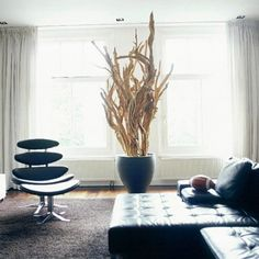 20 Original Ideas To Decorate Your Interior Using Driftwood | Shelterness