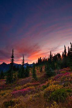 Fall sunset at Mt. Rainier Nationial Park, Washington