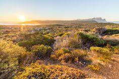 Cape of Good Hope [OC] [5179x3453]