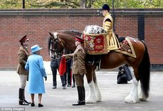 Big Red is undergoing a specialist training programme and will 'pass out' at the Queen's n...