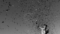 Kevin Harvick Photos Photos - This image has been converted to black and white.)  Kevin Harvick, driver of the #4 ditech Chevrolet, celebrates in Victory Lane after winning the NASCAR Sprint Cup Series Bad Boy Off Road 300 at New Hampshire Motor Speedway on September 25, 2016 in Loudon, New Hampshire. - NASCAR Sprint Cup Series Bad Boy Off Road 300