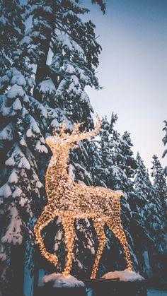 Christmas Phone Wallpaper, Christmas Aesthetic Wallpaper, Holiday Wallpaper, Winter Wallpaper, Christmas Feeling, Cozy Christmas, Christmas Time, Christmas Collage, Christmas Background