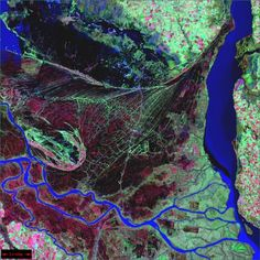 Parana River Argentina    This image is from the Landsat 7 satellite (Landsat Program) The Parana River delta is a huge forested marshland about 20 miles northeast of Buenos Aires, Argentina. Guided boat tours can be taken into this vast labyrinth of marsh and trees. The Parana River delta is one of the world's greatest bird-watching destinations. This image highlights the striking contrast between dense forest and wetland marshes, and the deep blue ribbon of the Parana River.
