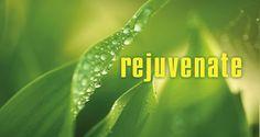 B2B Data Partners: Rejuvenate Your Data