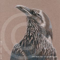 Raven Fine Art Print by BeckyTylerArt on Etsy, $20.00