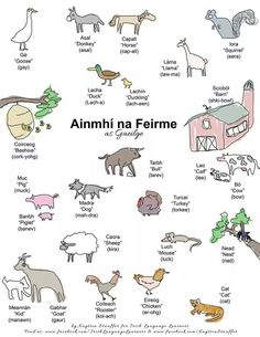 Ainmhí na Feirme (Animals of the Farm)
