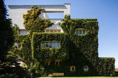 Adolf Loos - VILLA MUELLER groene gevel gevel planten TILIA