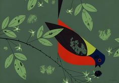 Painted Bunting, 1958 by Charley Harper. Illustration for the ''Ford Times''
