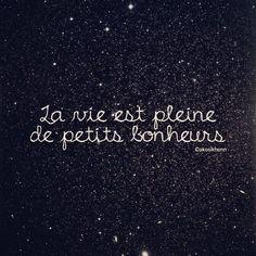 Saying By Anonymous La Vie Est Pleine De Petits Bonheurs Life Is Full Of Little Pleasures French Quote About Life Is Full Of Little Pleasures