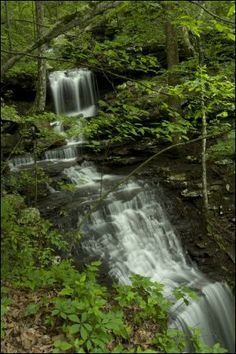 Arkansas (Spring or Fall Trip) Hiking @ Petit Jean State Park (Airfare to Little Rock $180, 1 hour drive, Lodging @ Harris Brake Retreats)